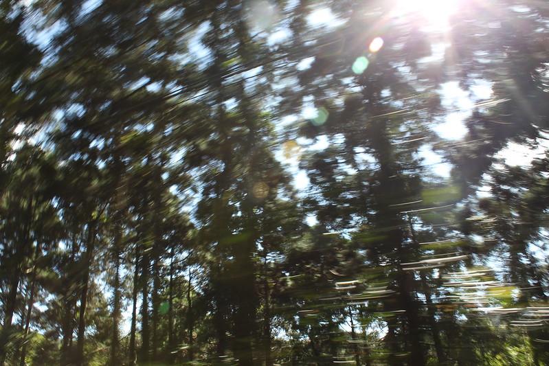 台北往宜蘭。17度C隨拍 (64)