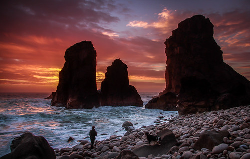 sunset dog praia beach portugal water colors água cores rocks photographer sintra pebbles pôrdosol fotógrafo pedras cabodaroca cadela rochedos malhadadoouriçal pedronascimento