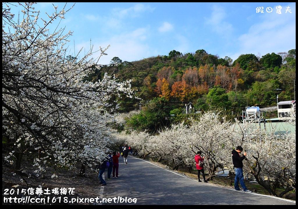 2015信義土場梅花DSC_9387