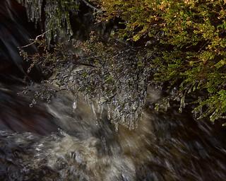 Stream rolling under a Bridge inWeardale near Blanchland