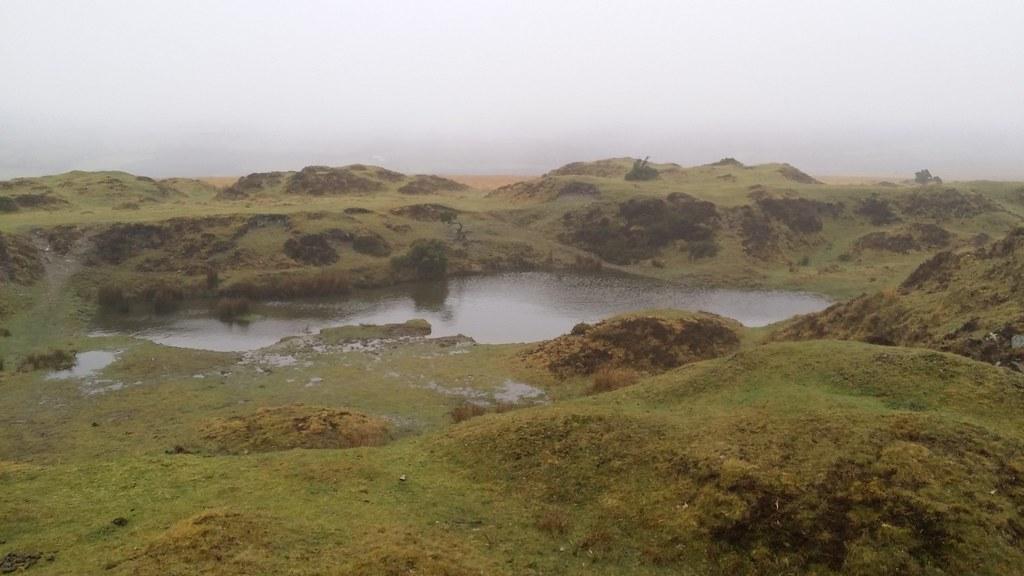 "Gibbet Hill ""tarn"" #dartmoor #sh"
