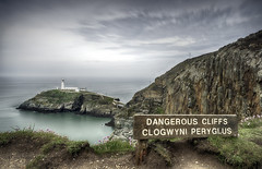 """""""Sitting Pretty"""" (South Stack Lighthouse)"""