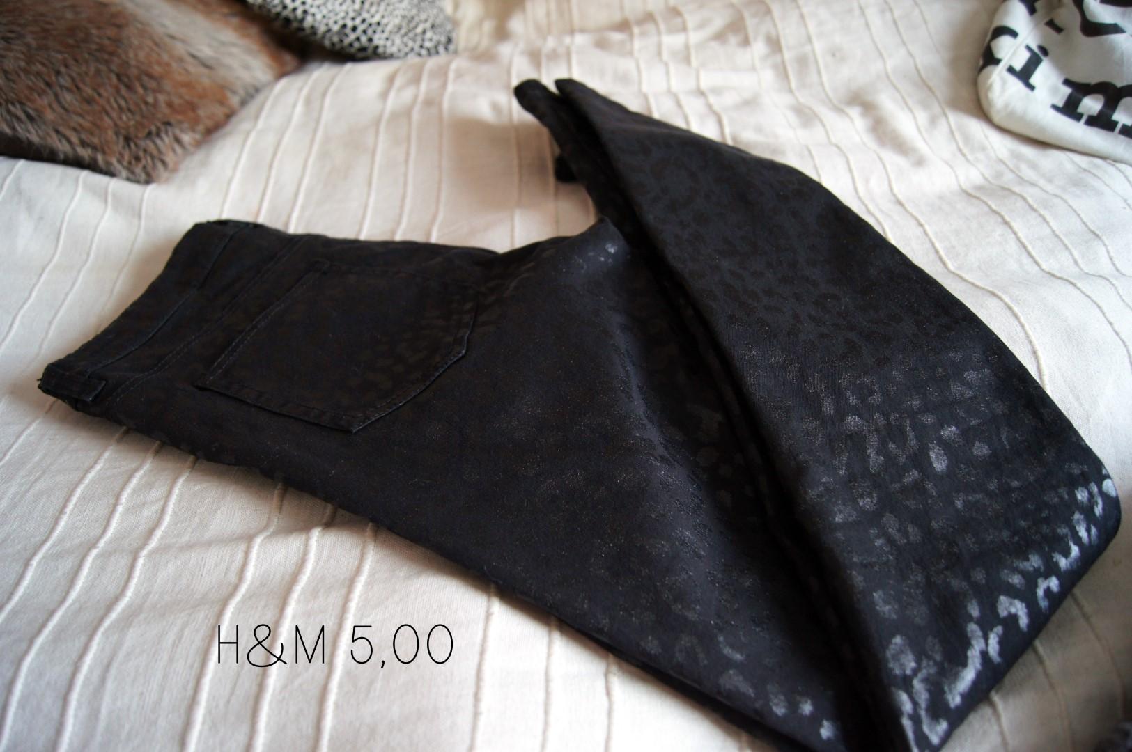 DSC04552 (Large)