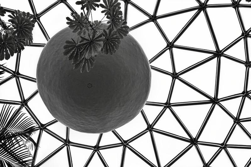 Bloedel Dome