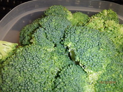 rapini(0.0), broccoli(1.0), vegetable(1.0), vegetarian food(1.0), leaf vegetable(1.0), produce(1.0), food(1.0),