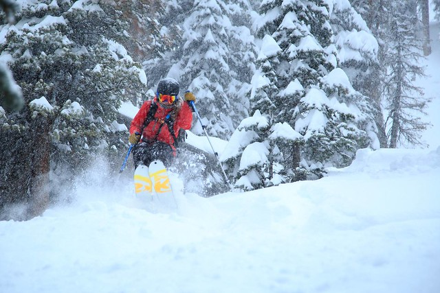 Wolf Creek powder