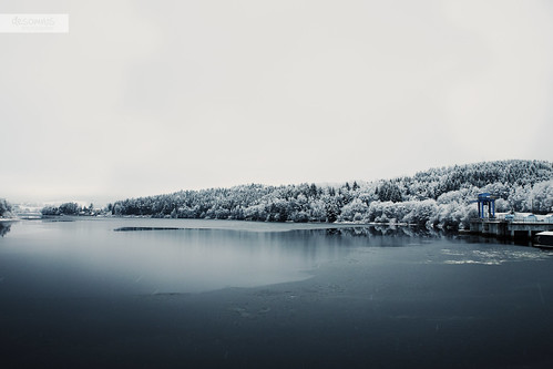 winter lake snow cold water landscape landscapes frozen czechrepublic landschaft bohemia snowcovered southbohemia landscapephotography böhmerwald bohemianforest moldaustausee desomnis