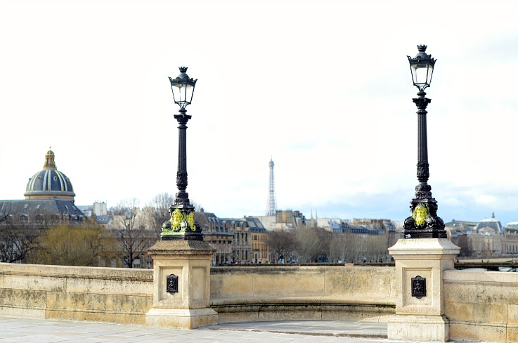 DSC_2681 Paris bridge