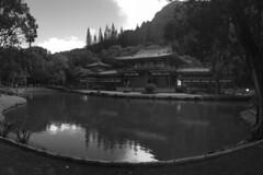 Oahu - Byodo-In Temple