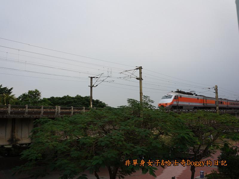 高雄九曲堂大樹舊鐵橋天空步道鳳梨罐詰工場21