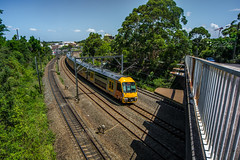 Train of Sydney