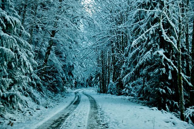11-23-14 Snowy Suiattle