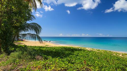 vacances holidays plage guadeloupe île deshaies dreambeach