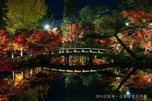 2014京阪神-永觀堂夜間拜觀2315_001