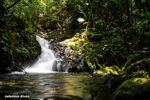 brazil forest waterfall cachoeira mataatlantica