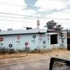 Título: aún hay esperanza. #Guatemala #SanJuanSacatepequez #Guatemala #garden #flores #flora #flowers #painting #GlobalSouth