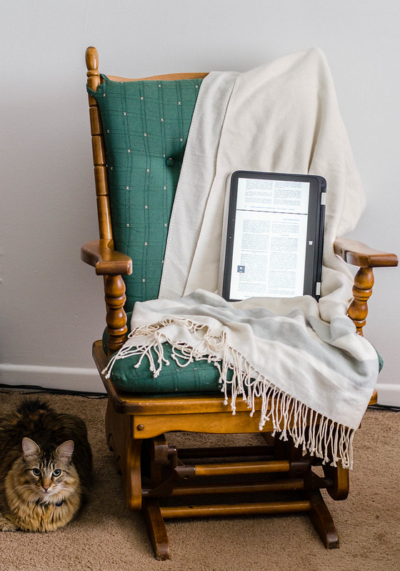 HP x360 and Cat | cookingalamel.com