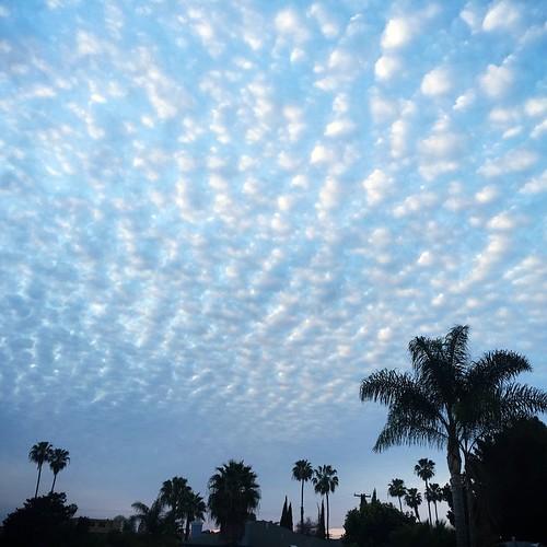 Fresh #fmsphotoaday Sweet clouds tonight!