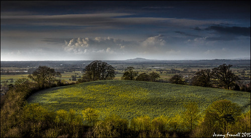 uk trees england southwest landscape countryside glastonbury somerset february hedgerow brentknoll 2015 somersetlevels mendiphills nikond7100 photographybyjeremyfennell