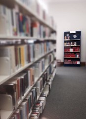 shelving, shelf, building, furniture, book, bookselling, library, interior design, archive, public library,