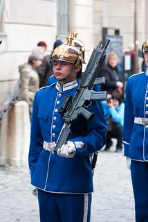 Armed royal guard