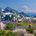 Summer's Peak by JohanEickmeyer