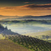 Sunrise @ Podere Belvedere, Val d'Orcia - Tuscany (Italy) by Eric Rousset