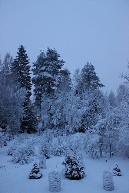 Snow 13_12_2014_3