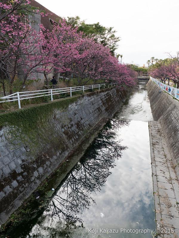 与儀公園 | Naha City, Okinawa 04