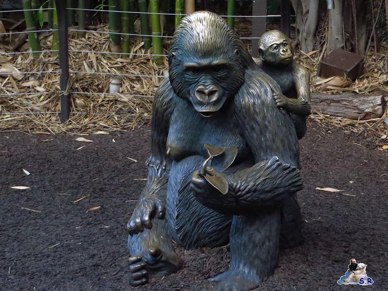 San Diego Zoo 272