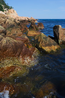 Colors of Acadia