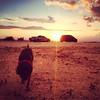Joesinho #pordosol #sunset #viralata #cachorro #dog #serranegra #saopaulo