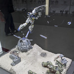 GBWC2014_World_representative_exhibitions-62