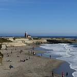 Santa Cruz_2015_0111 (9)