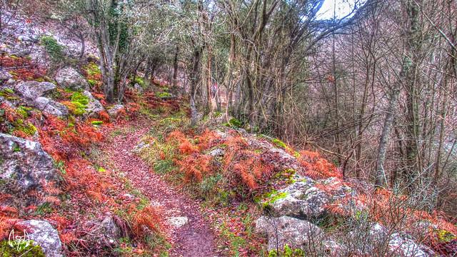 2015_01_04_Cañón del Ebro_125
