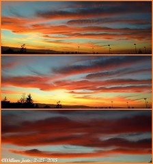 A Fiery Sunset Sky Painting Over The City This Evening! (2-25-15) Collage #4