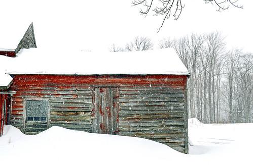 Snowfall at Spec Pond Farm