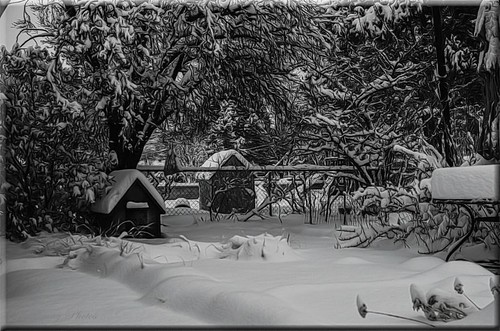 The Flickr Lounge-Snow Day