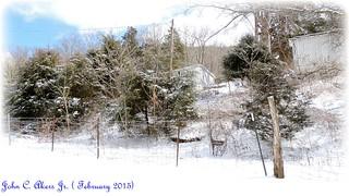 ice snow cold 2015 023