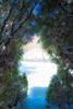 Entrance to a winter wonderland...