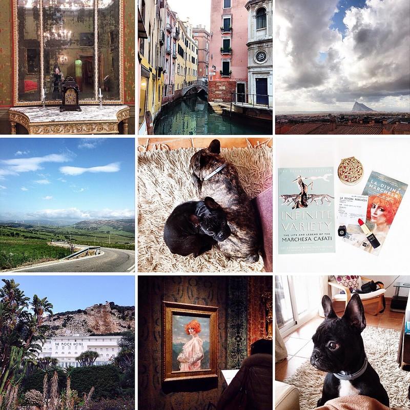 Instagram February 2015