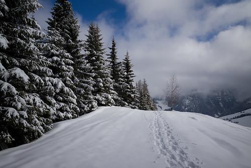 schnee winter snow landscape schweiz switzerland europe suisse 28mm rangefinder snowshoeing mp svizzera raquette schwyz 2015 svizra leicam schneeschuh schneeschuhwanderung elmaritm 150228 typ240 ©toniv brunniholzeggfurggelenstockoberiberg m2402346