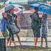 Halifax rain by vonprond