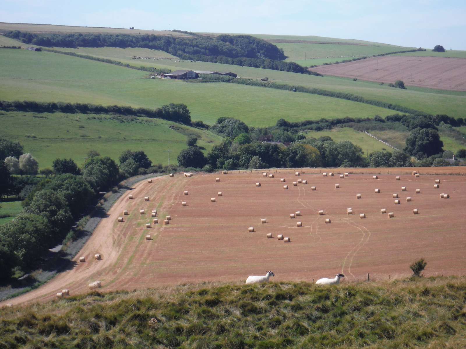 South Easterly View from Maiden Castle SWC Walk 275 Dorchester South Circular or to Portesham