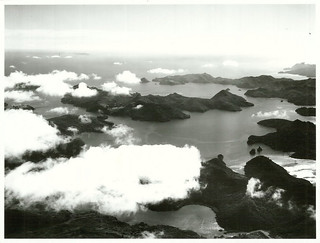 Aerial of part of Great Barrier Island