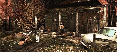 Autumn hut
