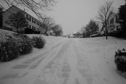 Snow Jan 6, 2015