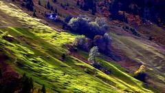Laderas de los Alpes
