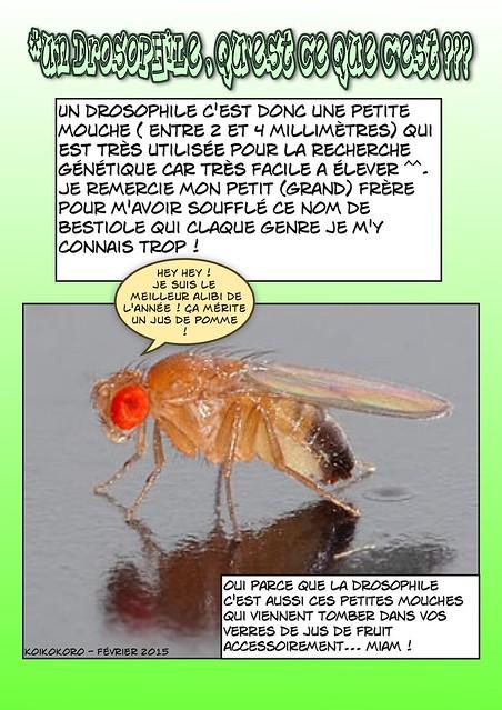 Tinies~ En roue libre ! p.8 - Page 6 15943259144_1e99186bfd_z