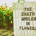 The Earth Smiles In Sunflowers by Ryan Closson